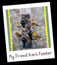 Kim's Feeder