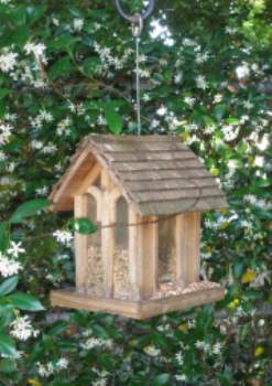 Front Yard Birdfeeder