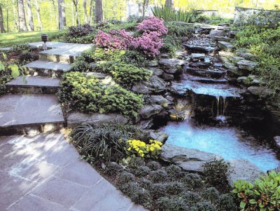 Decorative ponds for Ornamental garden ponds