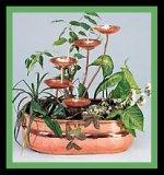 www.garden.com